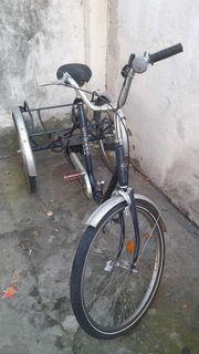 Kynast Dreirad für Erwachsene