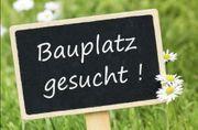 Suche Grundstück Bauland Bauplatz in
