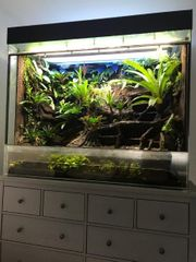 Terrarium mit Wasserteil