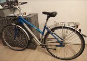 Bergamont ee Damen-Rad 28 7