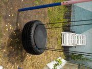 Reifenschaukel ohne Gestell nur Reifen