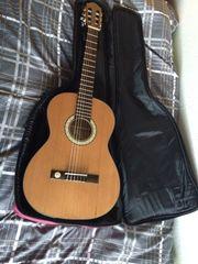 Gitarre Pro Natura Bronze Teleri