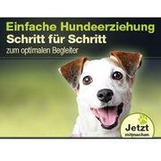 Online Hundetraining Hundeschule Hundeerziehung