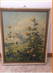 Gemälde Gebirgsblumen von Märtens Bild