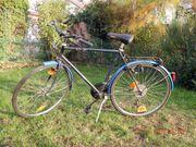 Trekking Herren Fahrrad