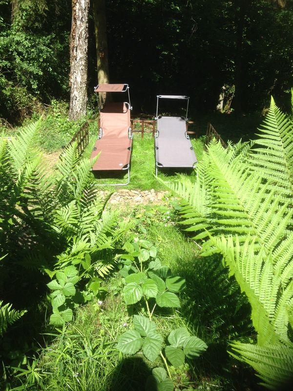 Sonniges Freizeitgrundstück mit Hütte in