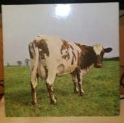 Jede Pink Floyd LP nur