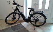 E-Bike Damenfahrad Pegasus