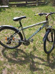 Giant Mountainbike Zoll 26