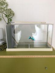 Aquarium Nano-Auarium