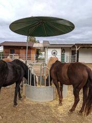 Heuraufe für Pferde
