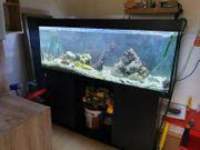 400L Aquarium komplett mit Eheim