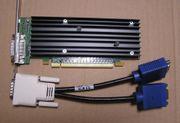 Grafikkarte NVS 290 NVIDIA NVS290
