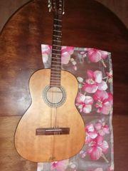 Holzgitarre Höfner