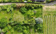 Gartengrundstück am Hemsberg - Beste Lage