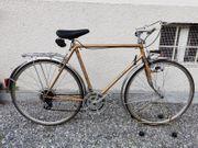 Rennrad Simplon Vintage