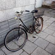 Oldtimer Damen Fahrrad Modena