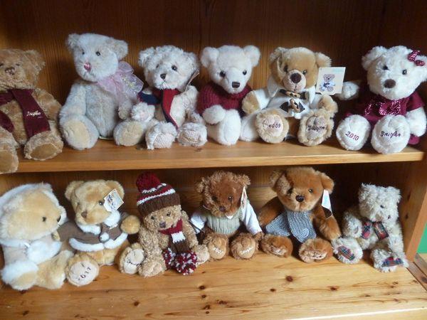 Meine Sammlung Bären