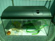 Aquarium 54 liter