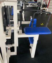 Gym80 Triceps-Maschine