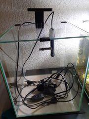 AquaEL Nano Aquarium 30L