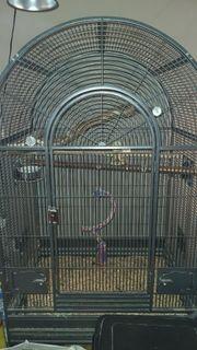 Vogel Käfig voliere