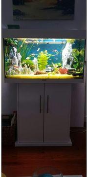Verkaufe schönes weißes Juwel Aquarium