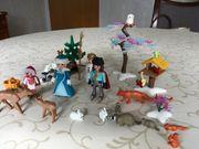 Playmobil Prinzessin Eislaufen Waldtiere Top
