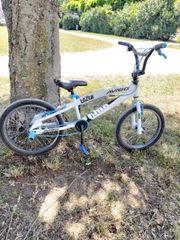 BMX Fahrrad- LAZER AVIGO 20Zoll