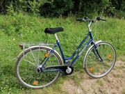 Fahrräder Giant town sydney Conquest