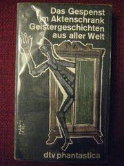 Spannendes Jugendbuch Das Gespenst im