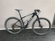 Mountainbike Quantor Carbon Hardtail 29er