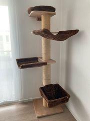 Kratzbaum aus Holz zu verkaufen