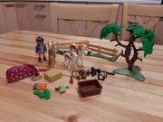 Playmobil Pferdekoppel