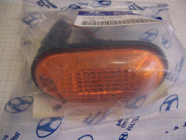 HQ804500 Seitenblinker Hyundai Galloper