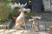 Rentiere Elche groß und klein