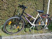 Fahrrad Rike 26 Zoll 21
