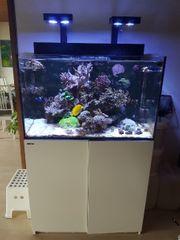 Red Sea E Max Aquarium