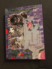 1000 Teile Puzzle Katzen