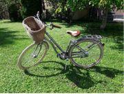 Pegasus Citybike