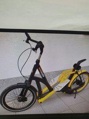 StreetStepper Fahrrad