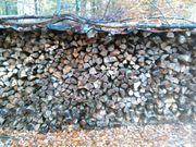 Trockenes gespaltenes Brennholz Buche - Eiche -