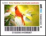 Biberpost Vögel Roter Kardinal Satz