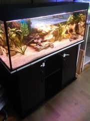 120x50x50cm 300l Aquarium mit Unterschrank