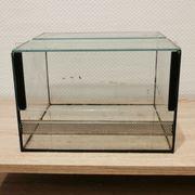 Terrarium Glas 30 cm x