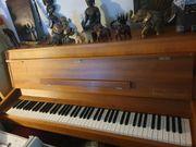 Klavier Pianohaus Hirsch 2020 gestimmt