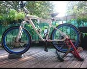 BMW Croozer Fahrrad