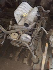 VW T4 Motoren 2 4
