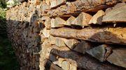 Brennholz ca 15 Ster