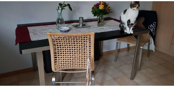 Ikea Esstisch Mit 4 Stuhlen In Schwaikheim Speisezimmer